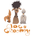 Dog grooming service vector image