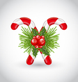 Christmas sweet canes with holly berry and pine vector image vector image