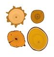 Tree wood slices set vector image