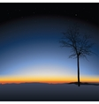 tree on sunset background vector image