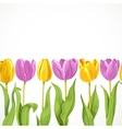 yellow and purple flowers tulips seamless vector image