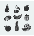 Set of symbols fruit vector image