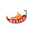 chili peppper hot fire for mexico icon vector image