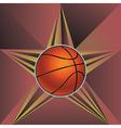 Basketball Ball on Rays Background6 vector image vector image