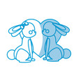 lovely couple rabbit with heart decoration vector image