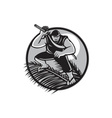 Samoan Ninja on top of Coconut Front Circle vector image