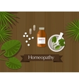 homeopathy natural herbal medicine alternative vector image