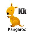 Alphabet K with kangaroo vector image