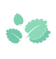 Mint Isolated leaves on white background vector image
