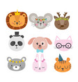 cute animals with funny accessories set of hand vector image