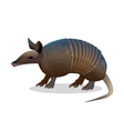 Armadillo isolated Realistic placental mammal vector image