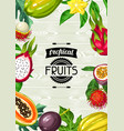 background with exotic tropical fruits vector image vector image