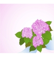 Background with hydrangea decorative background vector image