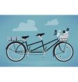 Romantic Tandem Bike vector image