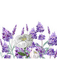 hand drawn lavender and peony template vector image