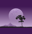 full moon rising vector image