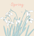Snowdrops spring bouquet Hand-drawn Card vector image