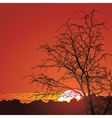 beautiful sunset in mountains vector image