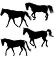 set silhouette of black mustang horse vector image
