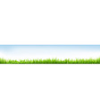 header with grass vector image vector image
