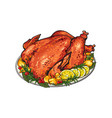 whole roasted turkey served with lemon and herbs vector image