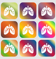 Lungs sign icon Nine buttons with bright vector image