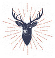 hand drawn vintage label with textured deer vector image