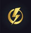 light bolt electric gold logo vector image