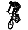 Teenager riding a BMX bicycle vector image
