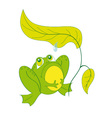 A frog sitting under a sheet vector image