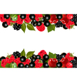 Background with fresh berries and cherries vector image
