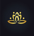 lotus flower abstract gold logo vector image