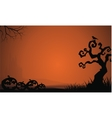 Silhouette of Halloween pumpkins and dry tree vector image