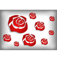 Red roses on grey background vector image