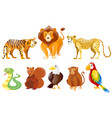 set of different wild animals vector image