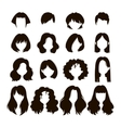 woman hairstyle vector image