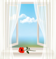 Background with an open window and a red flower vector image