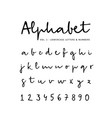 hand drawn alphabet font isolated lower vector image