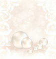 Romantic card with set pearl vector image vector image