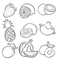 doodle of hand draw fruit vector image