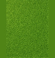 background texture of fresh green grass vector image