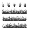 grass set on white background vector image