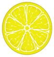 limun slice resize vector image