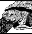 Turtle animal head symbol for mascot vector image