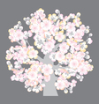 sacura tree blossom vector image vector image