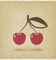 cherry old background vector image