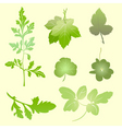 plants silhouettes vector image vector image