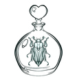 Hand drawn engraving Sketch of May bug Beetle in vector image