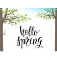 spring green trees vector image