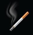 smoldering cigarette vector image vector image